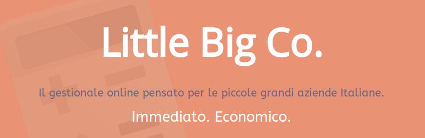 Gestionale Online   LittleBigCo.